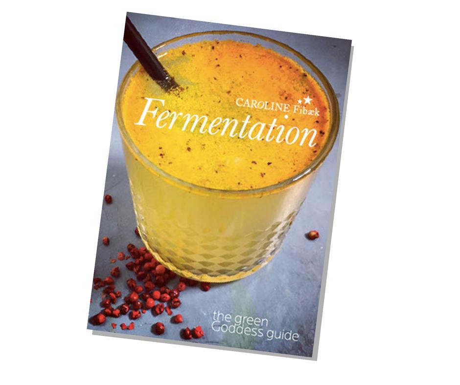 Fermentation e-book by Caroline Fibaek